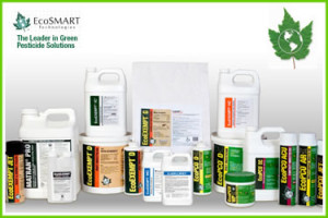 Eco Friendly Pest Control Products
