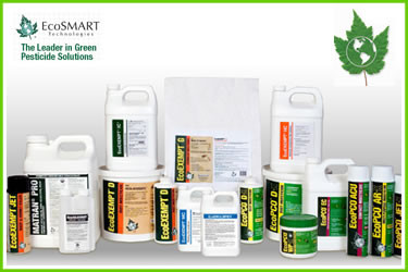EcoSmart Pest Control That Is Safe For The Earth