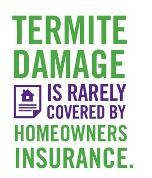Termite Damage isn't covered by home owners insurance
