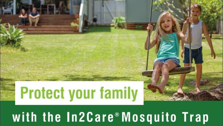 Mosquito Control In Roswell